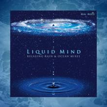 Relaxing Rain and Ocean Mixes by Liquid Mind