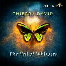 The Veil of Whispers by Thierry David