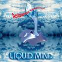 Ambience Minimus by Liquid Mind